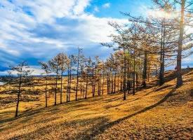 有一種美,叫貝加爾湖畔的金色秋天
