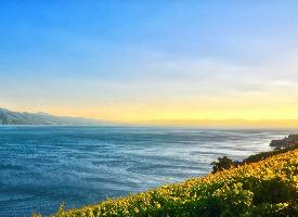 清新靜謐的湖泊風景圖片