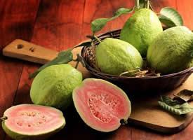 南方常見的番石榴水果圖片