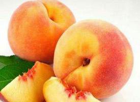 養生佳品的黃桃水果圖片