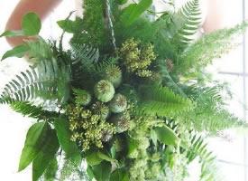 来自大自然的新娘手捧花,仅用绿叶,就能体会到浪漫与优雅