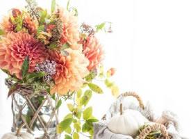 一组日本摄影的花束图片