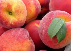 皮薄多汁的桃子圖片