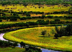 美丽的呼伦贝尔大草原图片