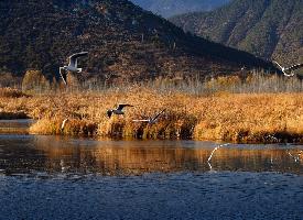 神秘的瀘沽湖風景圖片欣賞