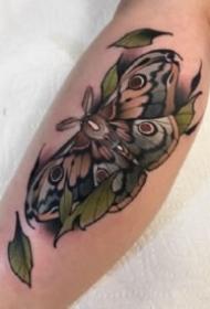 飛蛾紋身 9款彩色school風格的飛蛾子紋身圖片