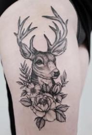 一組小清新黑色點刺麋鹿紋身圖案欣賞