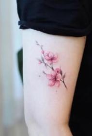 適合女生的9款粉紅色小清新櫻花紋身圖片
