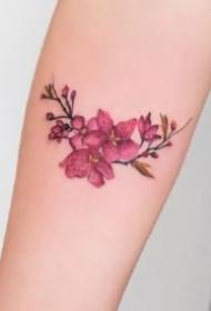 小臂上的9款小清新纹身植物花卉图片