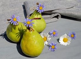 一组消热解暑的梨子图片欣赏