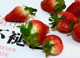 一組水果草莓無修真實圖片欣賞