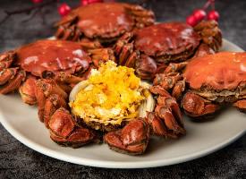 营养丰富的大闸蟹图片