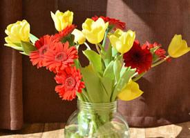 花瓶中的花卉唯美图片桌面壁纸