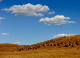 内蒙古坝上草原秋季风景