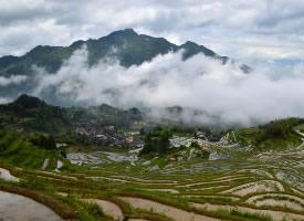 云和梯田風景圖片