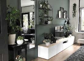 令人賞心悅目的????復古綠家居設計