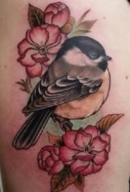 new school风格的一组彩色鸟纹身作品