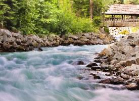 欢快的溪流图片