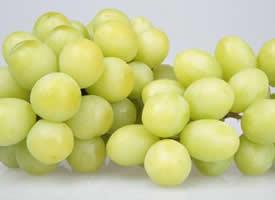 酸甜可口的葡萄图片欣赏