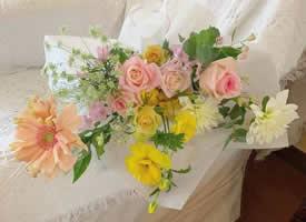 一组色彩柔和的花束图片欣赏