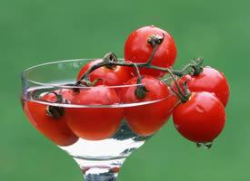 一组诱人西红柿图片欣赏