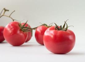 新鲜好吃的西红柿图片欣赏