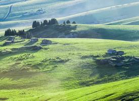 绿色天山牧场草原图片