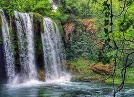 各处丛林瀑布的照片,置身于仙境里