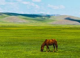 内蒙古呼伦贝尔草原风景图片