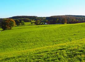 唯美大草原图片