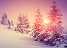 迷人冬季雪景壁纸图片