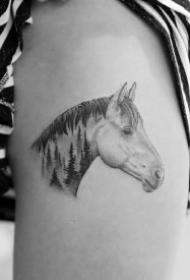 9款动物纹身之小马纹身图案分享