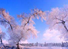 超美的吉林雾凇,来自大自然的恩赐