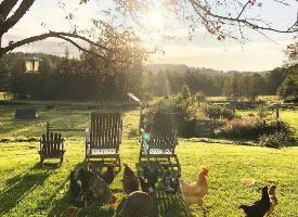 阳光与草原,多么美好的田园生活