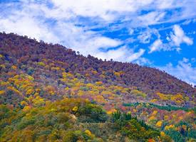 唯美的日本自然风光高清图片