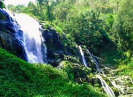 迷人的森林瀑布风景图片