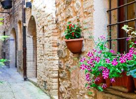 意大利斯佩罗,一个适合逃离喧嚣的鲜花小镇