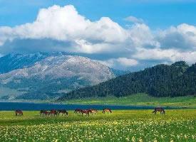 新疆那拉提草原,有一种孤独的美