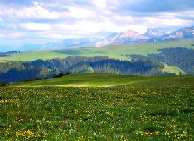 新疆喀拉峻草原风景图片