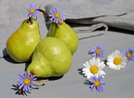 一组甜甜的香梨图片欣赏