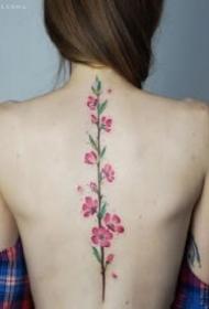 盛开在脊柱上的女生背部花朵纹身作品