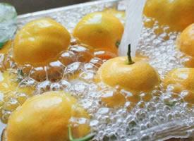 一组充满活力的橘子图片