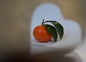 橘生淮南则为橘生于淮北则为枳