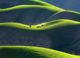 新疆哈拉峻人草原,仿佛婀娜多姿美人身躯