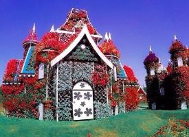 世界最大的花园——迪拜奇迹花园