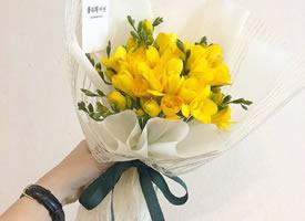 一组美丽好看的小花束图片
