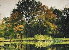 德国柏林 Tierberten 公园,置身其中,陶醉其里