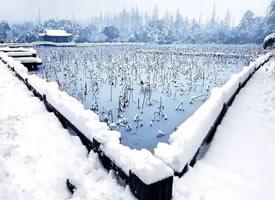 好想去西湖,看断桥的雪