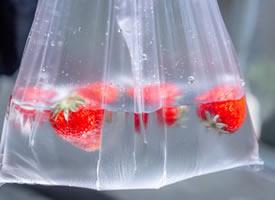 到了吃草莓的季节,就多吃点草莓