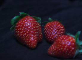一组暗色系成熟的草莓图片